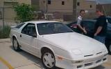 Daytona Shelby