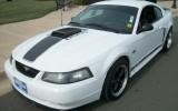 Mustang Mach 1 Premium